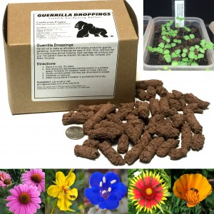 Our Guerrilla Dropping come in a wide variety of US native wildflowers.