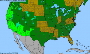 Native range of California Poppy